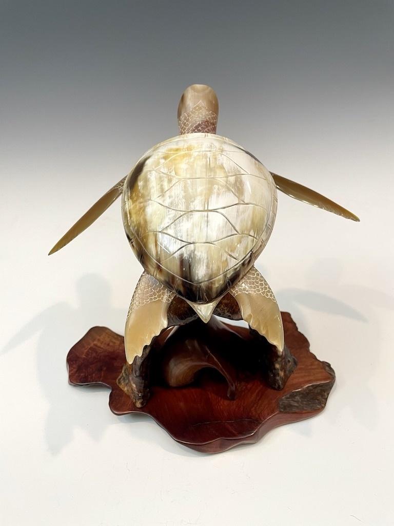 Swimming Turtle #498