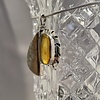 Fossil Mammoth Molar and Amber Pendant #514