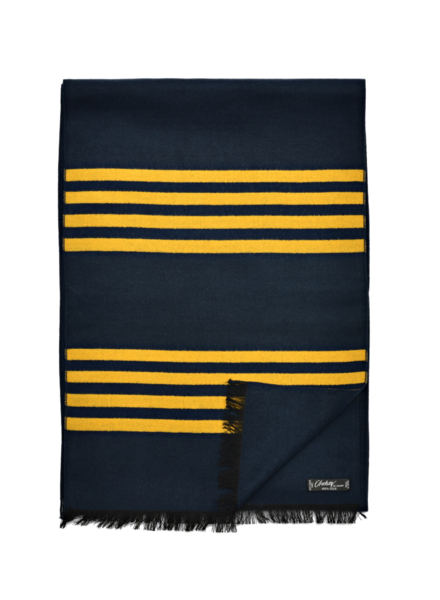 Chelsey Silk 4 maize stripe scarf