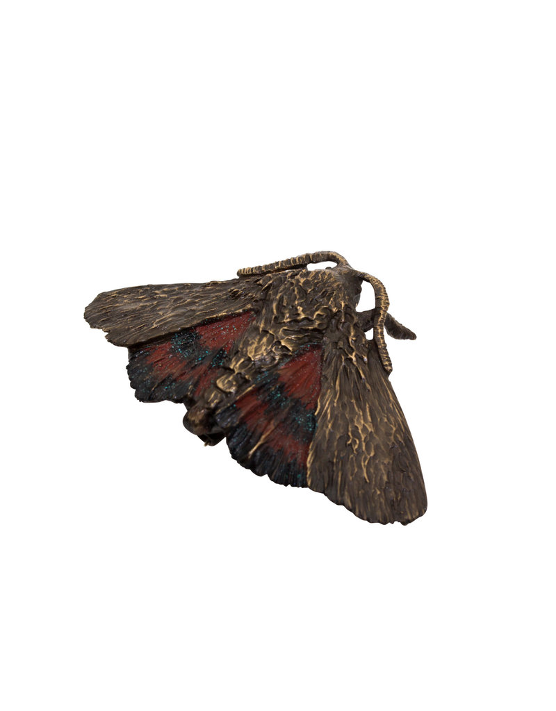 Red Underwing Moth Brooch in Bronze