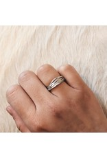 Nest Ring in Brushed Silver