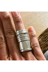 Trevi Pendro Annual Ring in Silver