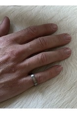 4mm Finger Shaped  Band in Titanium with Center Palladium Inlay
