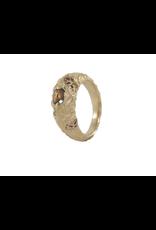 Alexis Pavlantos Macro Literfall Diamond Ring in 14k Yellow and Rose Gold