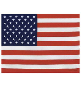 Mitchell Proffitt USA Embroidered Nylon-Polyester Blend Flag 3x5, Made in USA