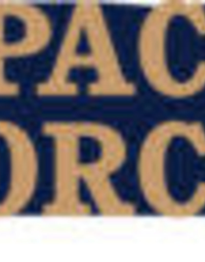 """Space Force 1"""" Lapel Pin"""