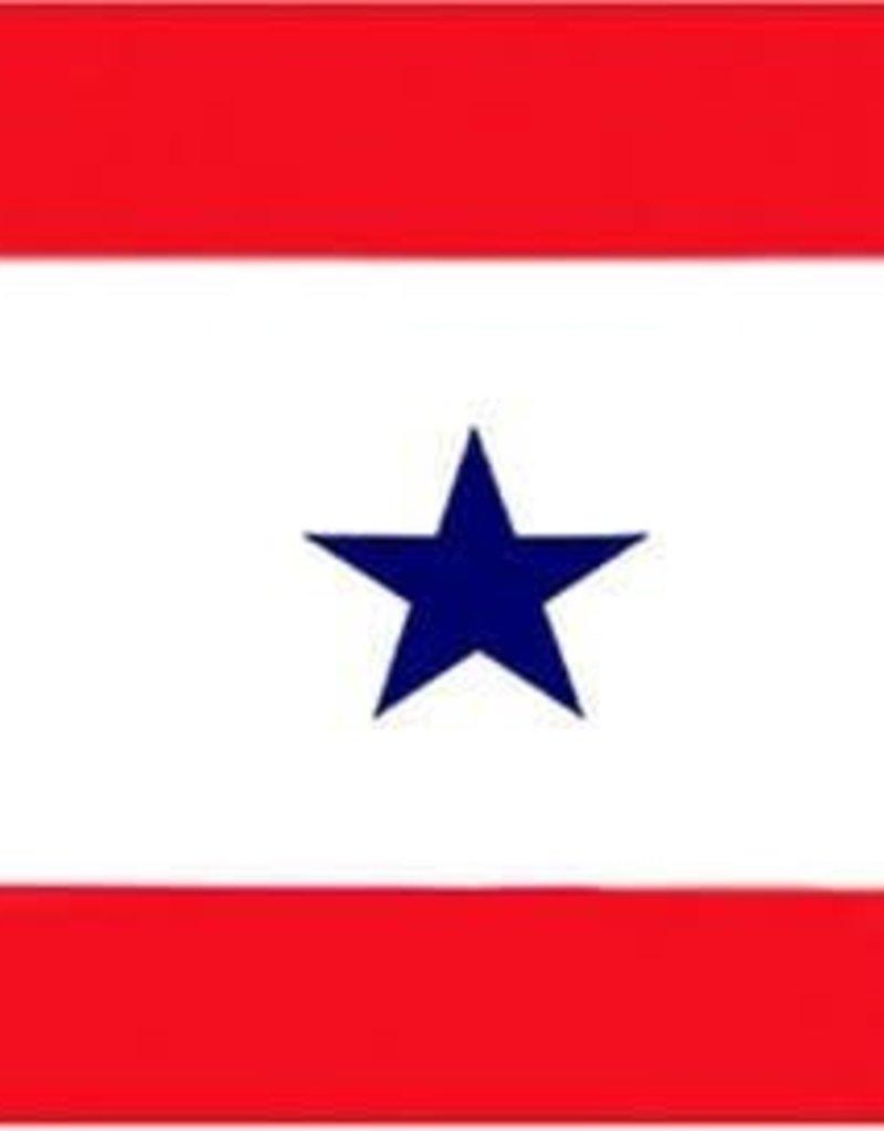 Blue Star Service Star Flag