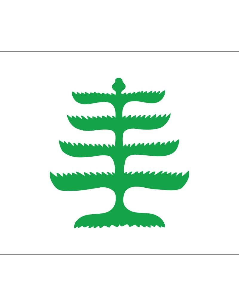 Pine Tree Historical Nylon Flag