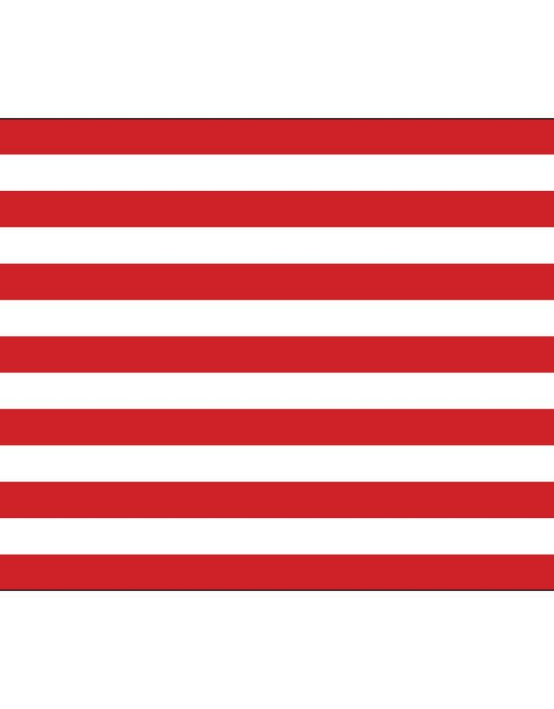 Sons of Liberty Historical Nylon Flag