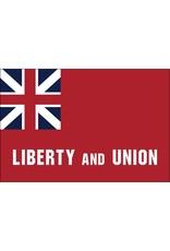 Taunton Historical Nylon Flag