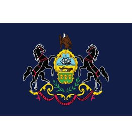Pennsylvania State Nylon Flag