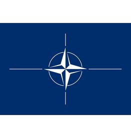 Nato Nylon Flag
