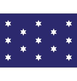 Washington's Commander-In-Chief Historical Nylon Flag