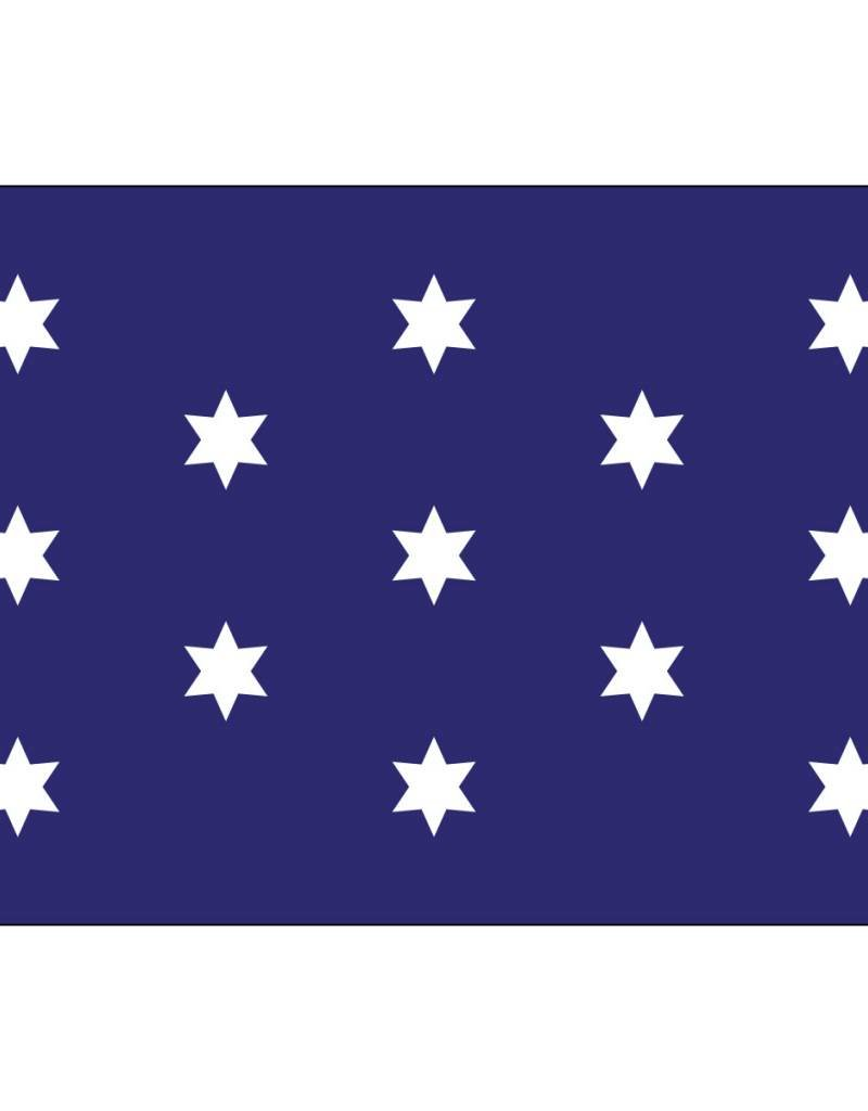Washington's Commander-In-Chief Historical Nylon Flag