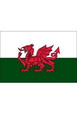 Wales Nylon Flag