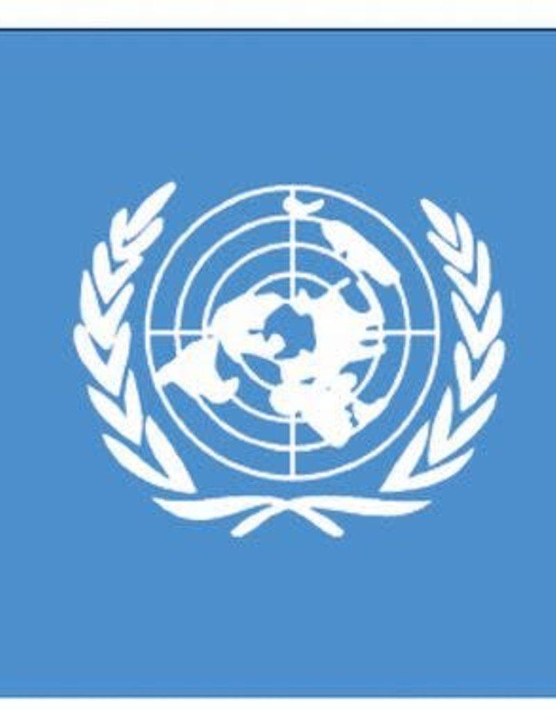 United Nations Nylon Flag