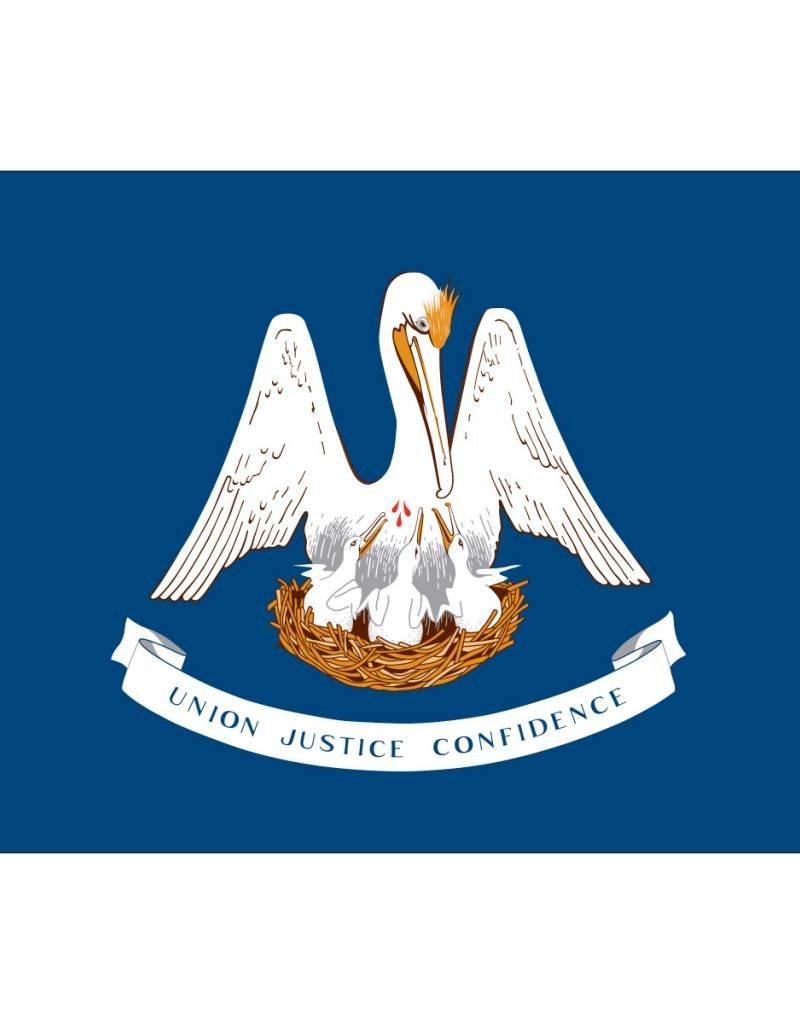 Louisiana Nylon Flag