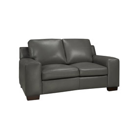 Bailey Leather Loveseat