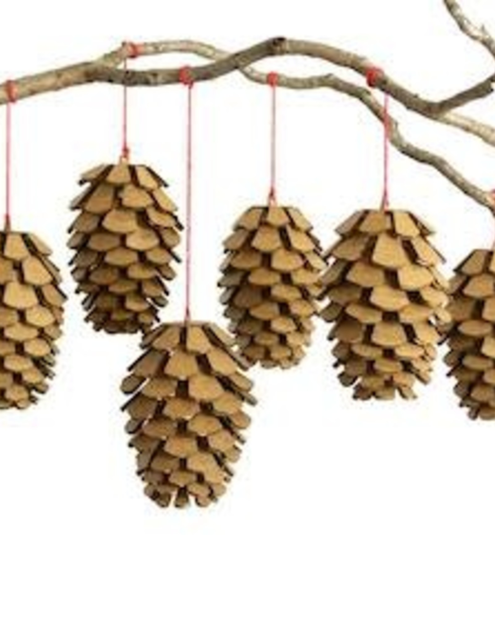 Cardboard Safari Cardboard Safari Pine Cones Set of Six - brown