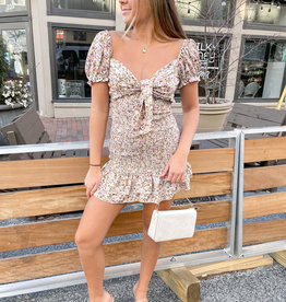 Chelsea Smocked Mini Dress