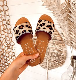 Coconuts by Matisse Cabana Slide