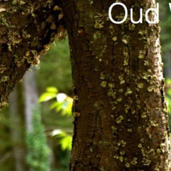 In Oud Wash / Shampoo