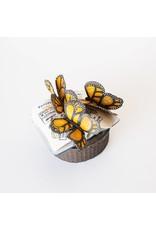 Suzanne Sidebottom - Butterflies & Passport