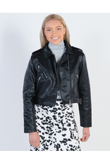 All About Eve All About Eve Demi Moto Jacket