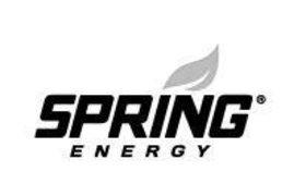 Spring Energy