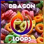 Dragon Loops