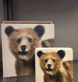 Young grizzly LARGE square block