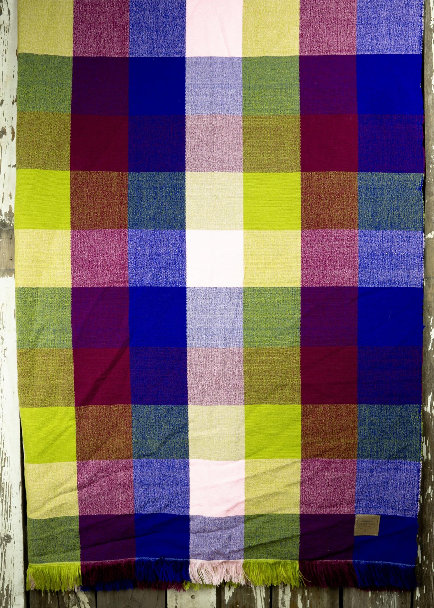 HeartPrint Threads Picnic Blanket- Ferris Wheel