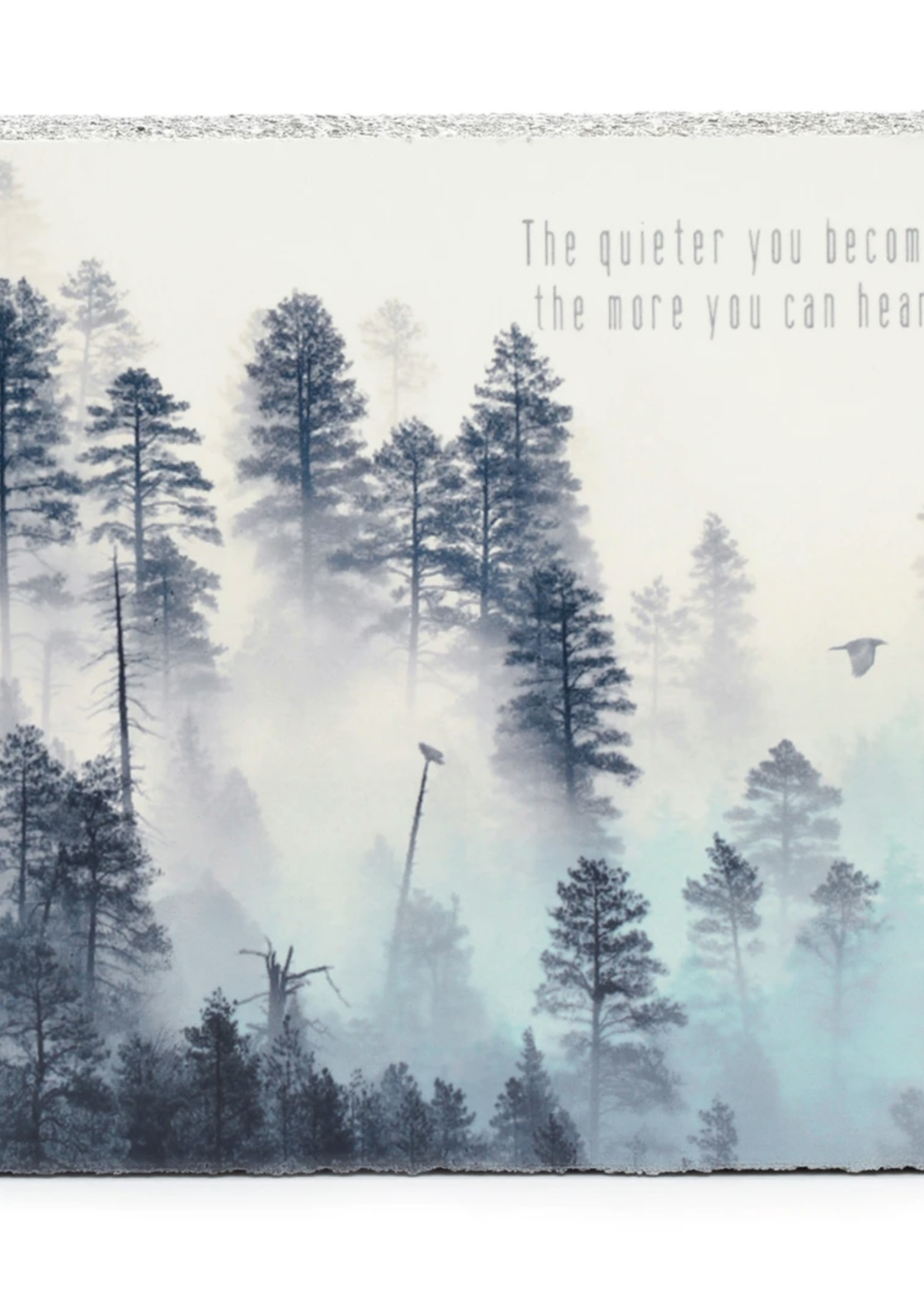 Quieter you Become MINI (LFS6732)
