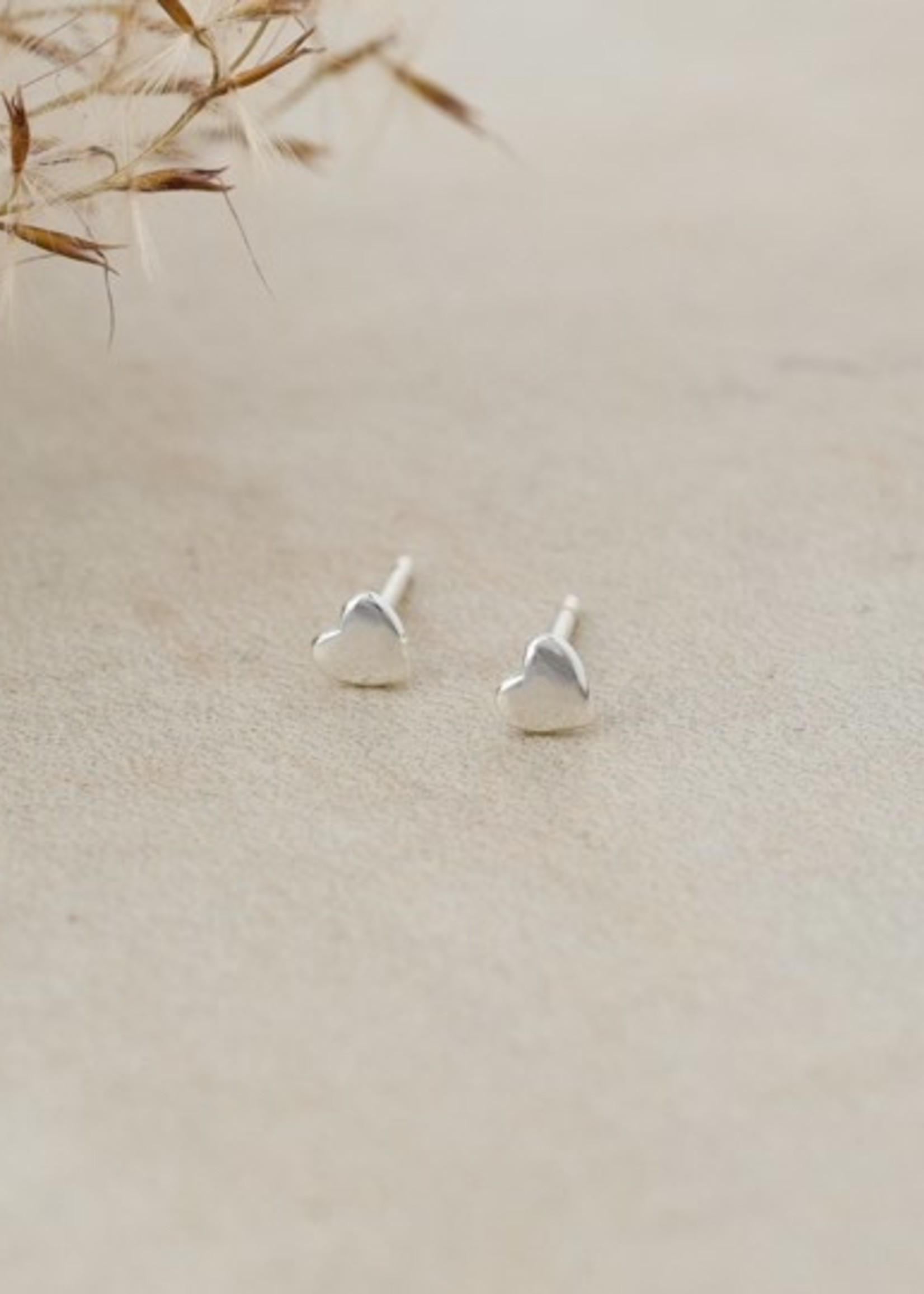Glee Jewelry Cutie Studs Silver