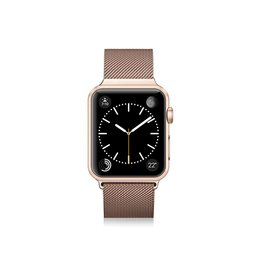 Casetify Casetify | Stainless Steel Band Gold Aluminium for Apple Watch 42mm | 122-0019