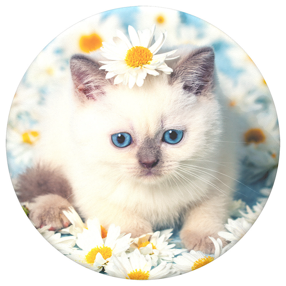 Popsockets PopSockets | PopTop Purrfect Flower | 115-1914