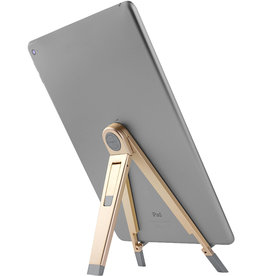 Twelve South Twelve South | Compass 2 for iPads - Gold TS-12-1617