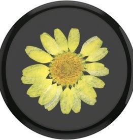 Popsockets Popsockets | Pressed Flower Yellow Daisy 802999