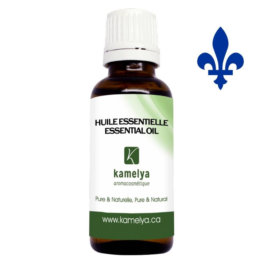 Huile essentielle d'épinette blanche du Québec