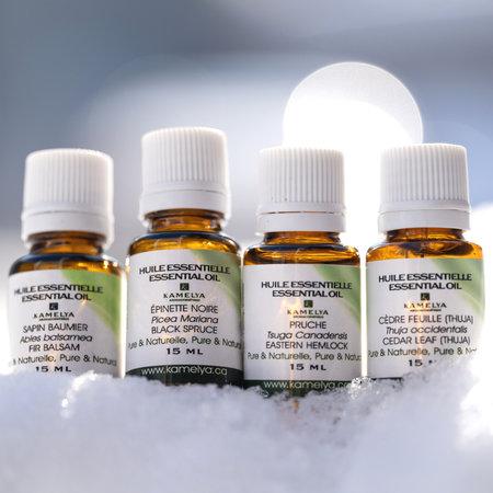 4 huiles essentielles de la forêt québécoise
