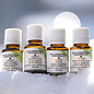 set of essential oils from the canadian forest