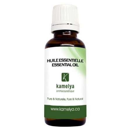 Cinnamom Essential Oil (Cinnamomum verum)