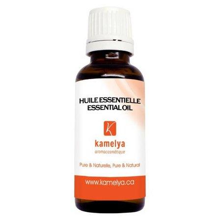 Curcuma Essential Oil (turmeric)