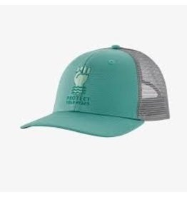 Patagonia Patagonia Protect Your Peaks Trucker Hat