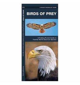 Waterford Press Birds of Prey by James Kavanagh
