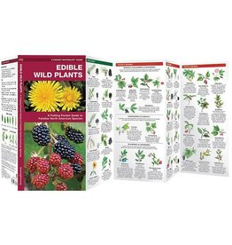 Waterford Press Edible Wild Plants by James Kavanagh