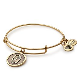 ALEX AND ANI Initial Q