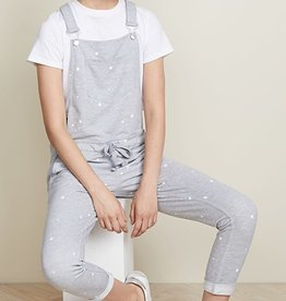 Z SUPPLY SHOP The Star Print Overalls