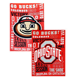 Ohio State Buckeyes Garden Flag - Brutus / Athletic O - 2 Sided