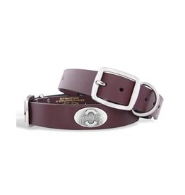 Ohio State University Concho Dog Collar (XL)